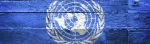 UN Logo on blue brick